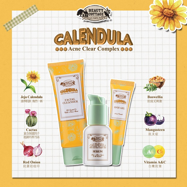 New Item!! CALENDULA